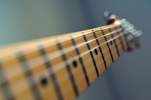 Guitar Fretboards