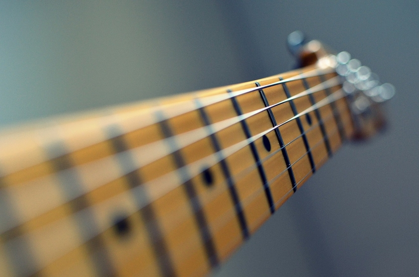 Beginner's Guide to Fretboards