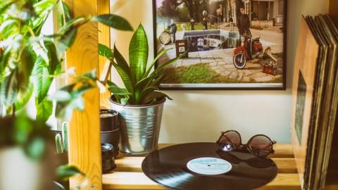 record and sunglasses
